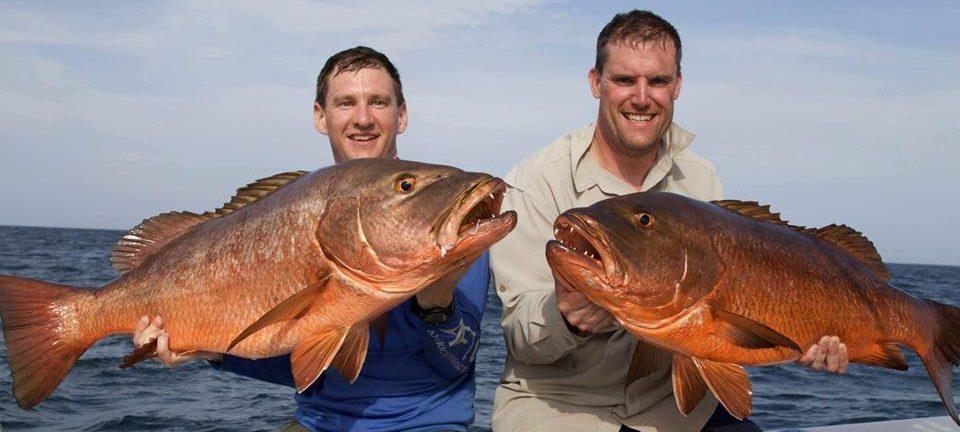 fishing cubera